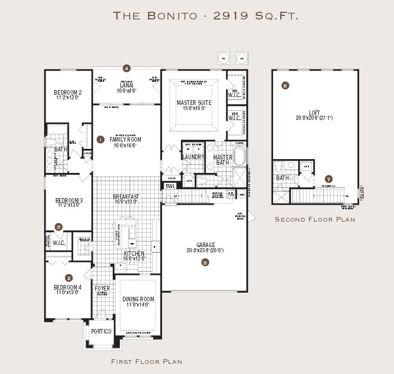the bonito